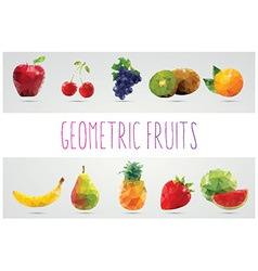collection geometric polygonal fruits triangles vector image