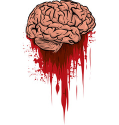 Fresh brain in a puddle vector