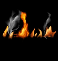 fire in black vector image