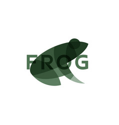 frog the effect of overlay modern vector image vector image