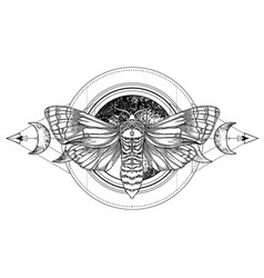 black and white moth over sacred geometry sign vector image