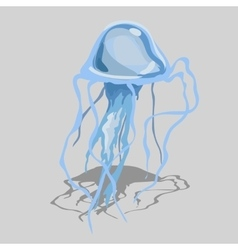 blue jellyfish with long tentacles isolated image vector image