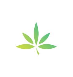 cannabis leaf hemp logo icon vector image