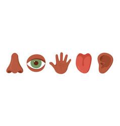 Five human senses organ set african americans vector