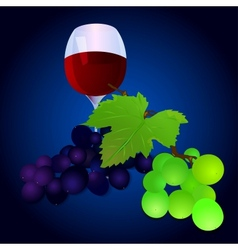 Grapes with a glass vector image