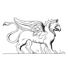 Griffin renaissance vintage vector
