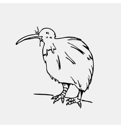 Hand-drawn pencil graphics kiwi bird Engraving vector image vector image