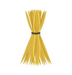 Hay tied with thread crop harvesting season icon vector