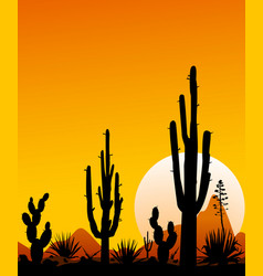 mexico desert sunset 3 desert landscape with cact vector image