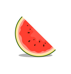 Watermelon fruit good for food and drink vector