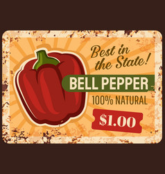 bell pepper farm rusty metal plate vector image
