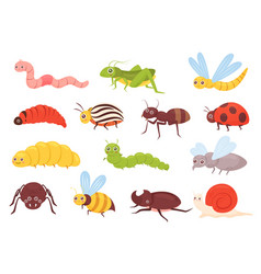 Cute insects set colorful funny insects vector