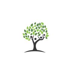 family tree symbol icon vector image