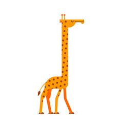 Giraffe isolated long neck beast africa animal vector