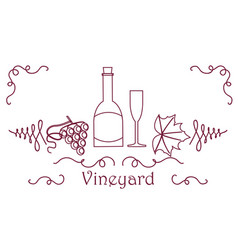 Grape berry leaf vine bottle vector