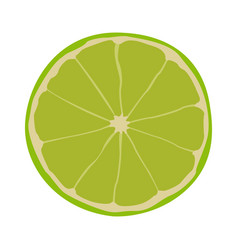 isolated lemon cut vector image