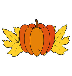 isolated pumpkin design vector image
