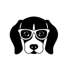 Portrait beagle in glasses isolated vector