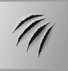 Realistic torn grey paper four claws scratches vector