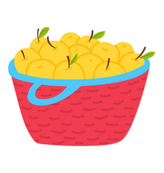 yellow apples in basket isolated vegetarian food vector image