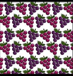 Delicious grape fruit background icon vector