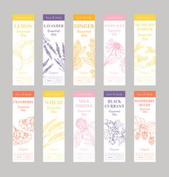 Cosmetic essencial oils vertical tags vector