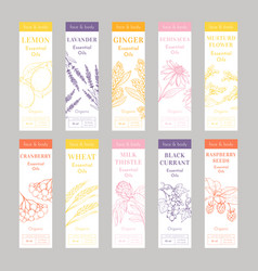 Cosmetic essential oils vertical tags vector