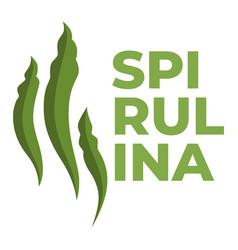 dietary food or superfood spirulina algae vector image