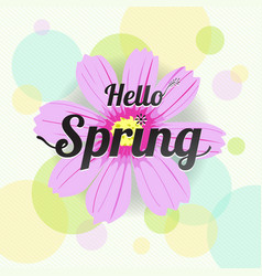 Floral spring with pink flower and colorful vector