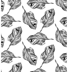 Graphic plant palm leaf tropic print black and vector