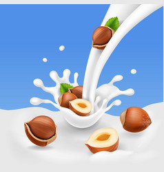 Hazelnuts and flowing milk yogurt splash and nuts vector