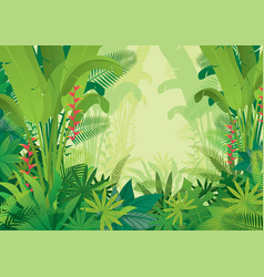 Tropical jungle light background vector