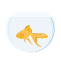 Goldfish in bowl vector