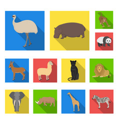 different animals flat icons in set collection for vector image