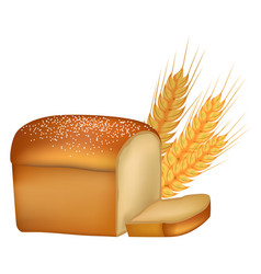 Freshly baked tasty bread and spikes vector