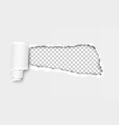 ripped hole in white sheet of paper vector image