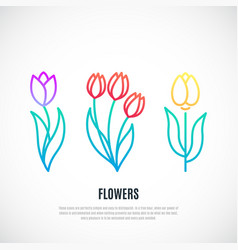 Set tulips isolated on white background vector