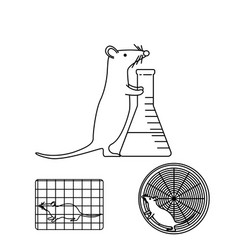 mouse in lab experiments vector image vector image