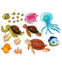 different types of sea animals vector image vector image