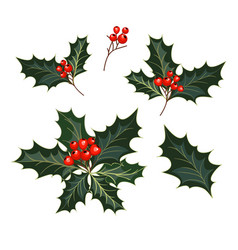 Christmas decorations with holly and red berries vector