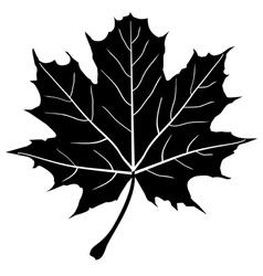 leaf outline vector image