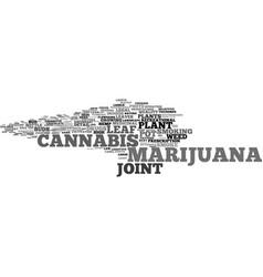Marijuana word cloud concept vector