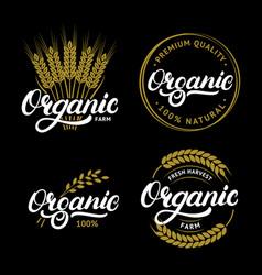 set organic hand written lettering logos labels vector image
