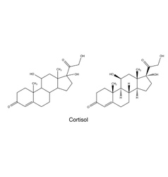 Structural chemical formulas of cortisol vector image