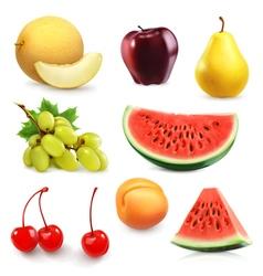 Summer fruits set icon vector