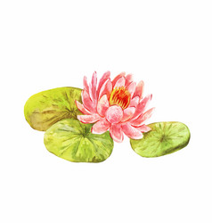 Vintage picture of lotus watercolor feng shui vector