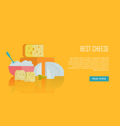 Best cheese banner natural farm food vector