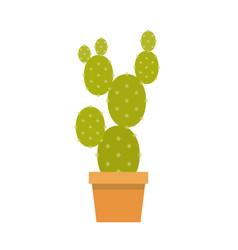 cactus in pot flat design vector image