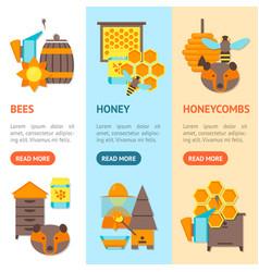 cartoon bee banner vecrtical set vector image