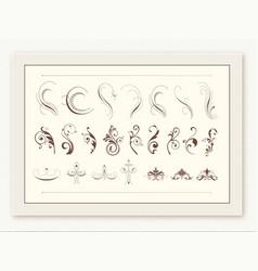Classic florals and ornament design element vector